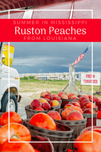 Summer in Mississippi means Ruston peaches from Louisiana